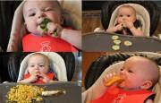Baby Led Weaning - Phương pháp ăn dặm khoa học tiên tiến