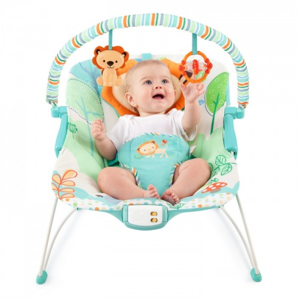 Bright Starts Bouncer - Playful Pals -